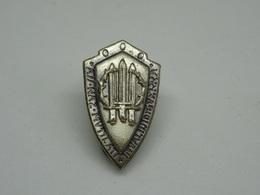 Distintivo Invalidi Di Guerra - Associazione Nazionale Mutilati - Altri