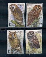 Natuur.  Uilen.  Chouettes Et Hiboux. - 1985-.. Oiseaux (Buzin)