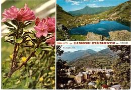 SALUTI DA LIMONE PIEMONTE - Saluti Da.../ Gruss Aus...