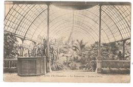 75 - PARIS - Jardin -d'Acclimatation - Le Palmarium - Jardin D'Hiver - Parcs, Jardins
