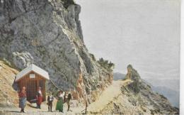 AK 0297  Rax - Raxgmoa ( Törl ) - Steig Mit Gelberhütte Um 1910-20 - Raxgebiet