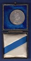 Silbermedaille 1894 V. Lauer, Wilhelm II. Und Bismarck, Vozügl.  Im Alten Etui - Tokens & Medals