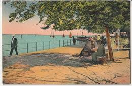 Le Pouliguen- La Promenade Et Le Port - Le Pouliguen