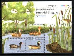 URUGUAY, 2018,BIRDS- DUCKS,S/S, MNH** - Anatre