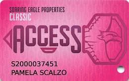 Soaring Eagle Casino - Mt. Pleasant, MI USA - Slot Card With Small 55 Over Mag Stripe - Casino Cards