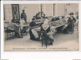 ILE D'OLERON : SAINT-DENIS : Le Triage Du Varech En Hier - Tres Bon Etat - Ile D'Oléron