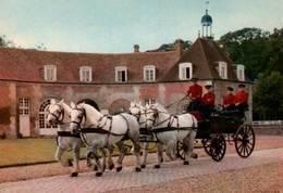 CPM - HARAS Du PIN - Elevage Du CHEVAL Français - Attelage D'Etalons Percheron - Chevaux