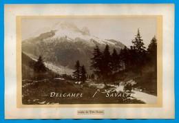 Chamonix 1890 - Trélechamp, Attelage Route Col Des Montets - Photo Albumine Aug. Couttet - Photographs