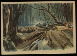 WW II Postkarte : Panzer Russland , Aus Dem Wald Von Kolodesy, Ungebraucht. - Allemagne