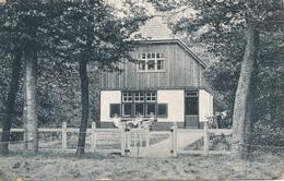 CPA - Pays-Bas - Putten - Nieuw-Groevenbeek - Putten