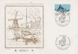 Switzerland 1966 Ausstellung Niederländischer Postmarken In Bern Card (44135) - Brieven En Documenten