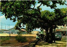 CPM SURINAME-Paramaribo-Waterfront (330303) - Surinam