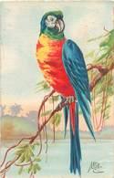 Illustrateur Mex ? - Oiseaux Perroquet     AX 1083 - Autres Illustrateurs
