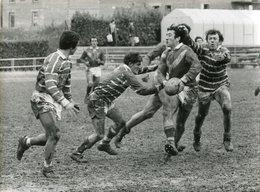XIII Catalan - Rugby - XIII Avignon - Perpignan