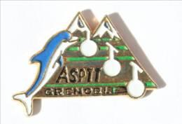 Pin's ASPTT - GRENOBLE (38) - Dauphin - Montagnes - Téléphérique - I435 - Mail Services