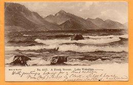 Lake Wakatipu New Zealand 1905 Postcard Mailed - New Zealand
