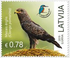 Latvia Lettland Lettonie 2019 (13) Latvian Fund For Nature - Bird - Lesser Spotted Eagle - Latvia