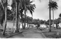 AFRIQUE NOIRE - GUINEE FRANCAISE : CONAKRY Habitations économique S.I.G. -  CPSM Dentelée N/B Format CPA - Black Africa - Guinée Française