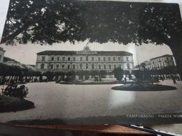 CAMPOBASSO PIAZZA MUNICIPIO  V1952 HE116 - Campobasso