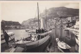 AO12 Monaco, Le Port Et La Tete De Chien - Harbor