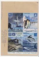 "TAAF - Enveloppe BF ""Sur Les Terres Australes... (Albatros, Manchots...) Alfred Faure Crozet 1-1-2001 - Terres Australes Et Antarctiques Françaises (TAAF)"