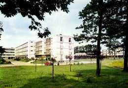 CPSM Grand Format MONTARGIS (Loiret) Lycée En Foret Mrs  Charles Nicod Lucien Lecuyer Arch Colorisée  RV  Edit Magne - Montargis