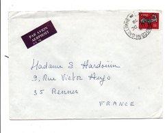 IRLANDE EIRE LETTRE POUR LA FRANCE 1973 - Covers & Documents