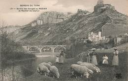 48 Le Rozier Sortie Des Gorges Du Tarn Au Rozier Et Rocher De Capluc Cpa Carte Animée Animation Troupeau Moutons Mouton - Autres Communes