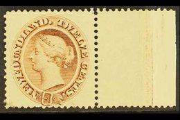 1894 12c Deep Brown, SG 61, Very Fine Marginal Mint. For More Images, Please Visit Http://www.sandafayre.com/itemdetails - Newfoundland And Labrador