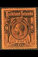 1912-20 KGV £1 Black/red, SG 69, Fine Mint For More Images, Please Visit Http://www.sandafayre.com/itemdetails.aspx?s=62 - Falkland Islands