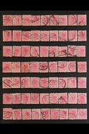 1882-1900 POSTMARKS ON 1d ROSE. An Interesting Collection Of 1d Rose Fine Used Stamps Selected For Nice Cancels And Pres - New Zealand