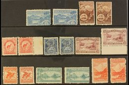 1899-1903 PICTORIAL ISSUE. MINT SELECTION With Shades On A Stock Card, Includes 1899-03 2½ (x2), 5d (x2), 6d (x2), 8d (x - New Zealand