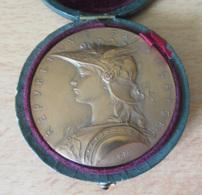 Médaille De Prix Du Ministère De L'Intérieur Signée O. ROTY, Dans Son écrin - Bronze - D. 51 Mm, Pds. 62 Gr - Professionnels / De Société