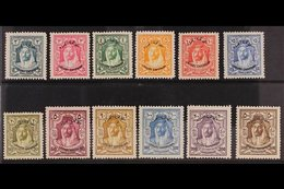 "1930 ""Locust Campaign"" Overprints Complete Set, SG 183/94, Very Fine Mint, Fresh. (12 Stamps) For More Images, Please Vi - Jordan"
