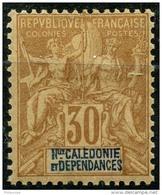 Nouvelle Caledonie (1892) N 49 * (charniere) - Nouvelle-Calédonie