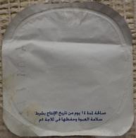Egypt - Couvercle De Yoghurt (foil) (Egypte) (Egitto) (Ägypten) (Egipto) (Egypten) Africa - Coperchietti Di Panna Per Caffè