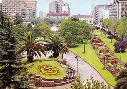 1 AK Südafrika * Johannesburg - Der Joubert Park Mit Der Blumenuhr - With Floral Clock * - Südafrika