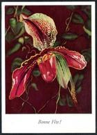 C7068 - Glückwunschkarte Blume Orchindee - Blumen