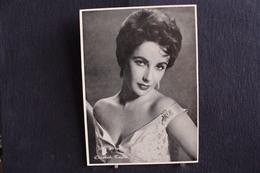 Sp-Actrice / Elizabeth Taylor, Est Une Actrice Britannico-américaine, Née En 1932 Morte En 2011 / Ph-13x18 Cm - Artistes