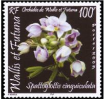 """Wallis YT 648 """" Orchidées """" 2005 Neuf** - Nuovi"""