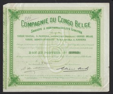 COMPAGNIE DU CONGO BELGE * SIEGE SOCIAL A MOBEKA * DISTRICT DES BANGALAS * 1919 * 22 X 18.5 CM - Afrique