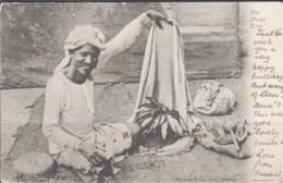 BURMA - 1907 - POSTCARD  THEMANGO TRICK THAYETMYO TO LONDON - Myanmar (Burma)