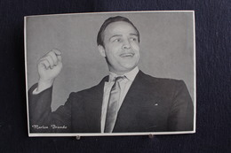 Sp-Actrice / Marlon Brando Est Un Acteur Et Réalisateur Américain Né En 1924 Mort En 2004 / Ph-13x18 Cm - Artistes