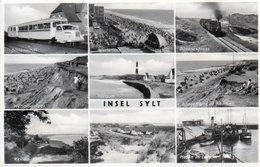 INSEL-SYLT- VIAGGIATA 1954-REAL PHOTO - Sylt