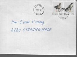 NORVEGE Lettre 1981 Oiseaux Rapace Faucon Canards - Aigles & Rapaces Diurnes