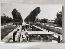 Migennes. Canal De Bourgogne. Animée. Péniche - Migennes