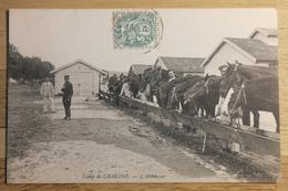 Cpa Camp De Chalons L'abreuvoir - TOR33 - Camp De Châlons - Mourmelon