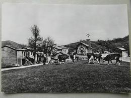 SAN BERNARDO DI CONIO -BELLA - Italia