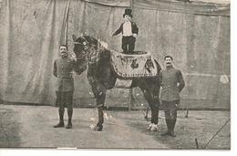 CIRQUE RANCY (mention Au Crayon) Spectacle Cirque Artiste Nain Cheval - Zirkus