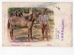 Ph3 - JAVA - LOSARANG - Staljongen Met Paard - Indonésie